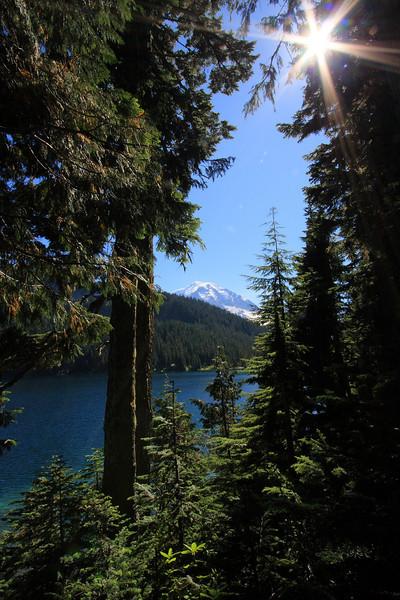 Tolmie Peak 01.JPG