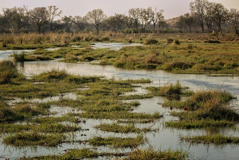 2014-08Aug-Okavango Masters-51-Edit.jpg