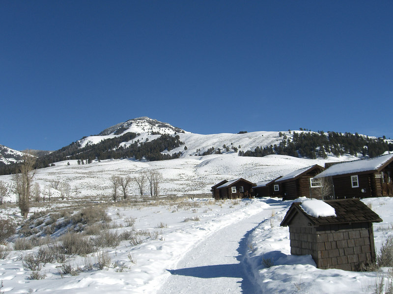 buffalo ranch calendar winter day 1_24_07.jpg