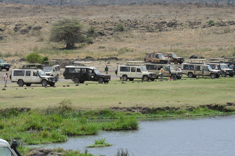 East Africa Safari 440.jpg