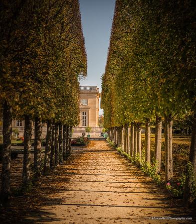 Les Allées de Versailles