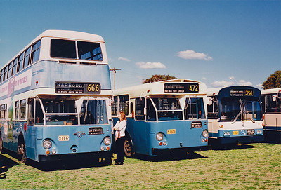 Government Buses - Sydney NSW
