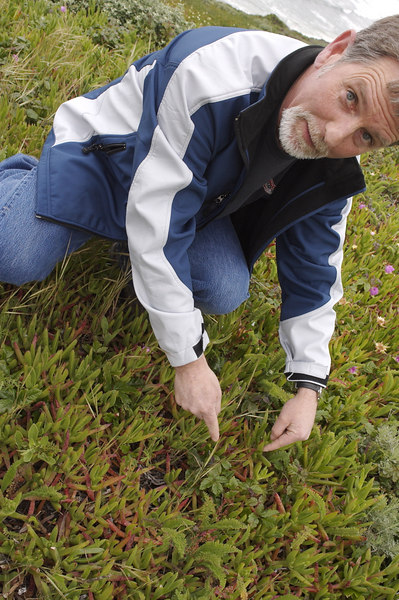Dave pointing out the that the local weeds always get their way, stay clear at all costs.