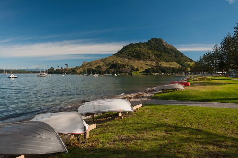 The Mount, Tauranga, 2014.