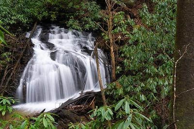 Headwaters Davis Creek Part 2