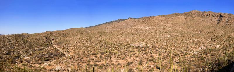 The Broad Desert Mountain Expanse