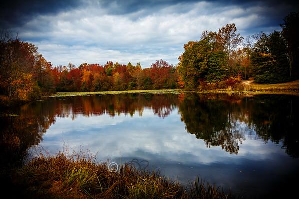 Fall Landscape  PAX RIVER
