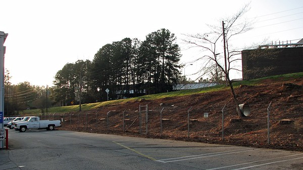 March 13:  After all of the pine trees have been removed .  .  .