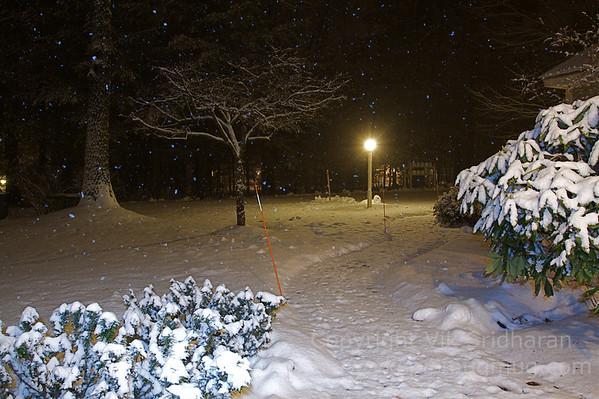 Winter Scenes - December 2012