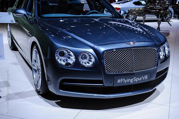 Mondial de L' Automobile 2014, My First Day