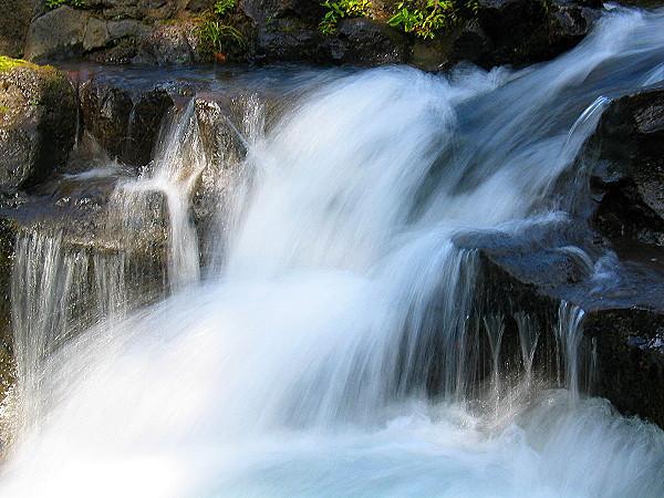 Rogue River (33713148).jpg
