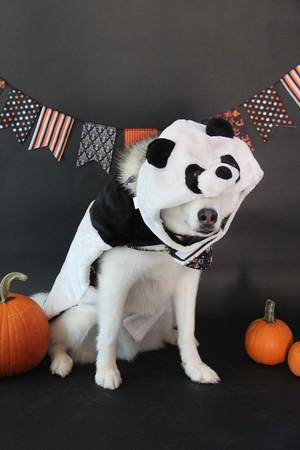 Molly, Jack, and Ralph - Halloween Fun
