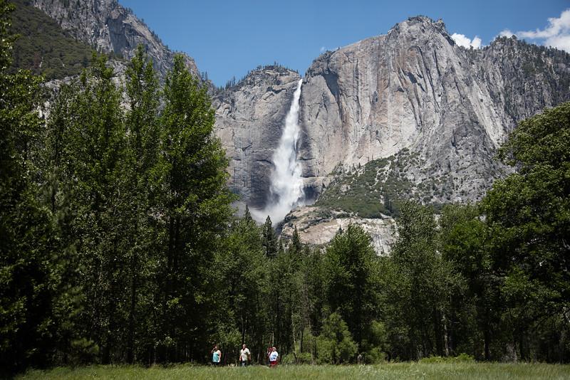 Yosemite_2016_Park-44.jpg