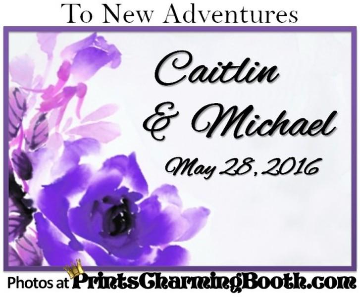 5-28-16 Caitlin and Michael Wedding logo.jpg