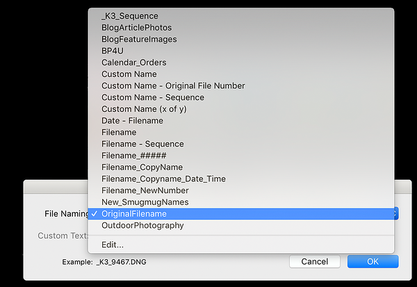 File Naming Selection List from the Renaming Window