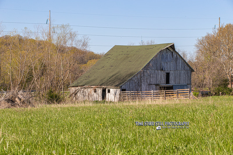 KC Landscape-27.jpg