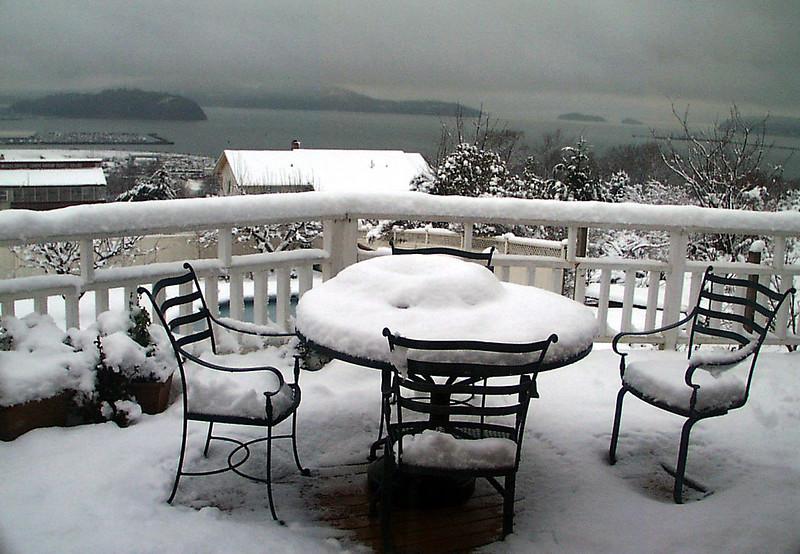 1-30-2002-snow#12.jpg