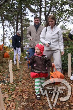 CCMNH — green halloween — Brewster, MA 10 . 30 - 2011