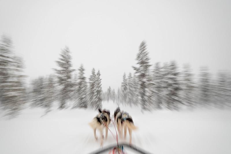 Finland_160116_40.jpg