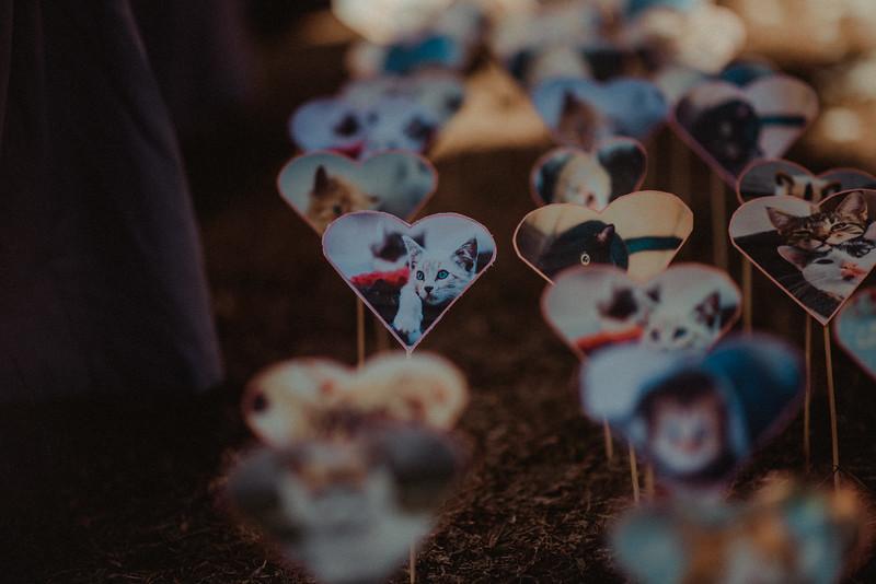 Jay Sheela Wedding-505.jpg