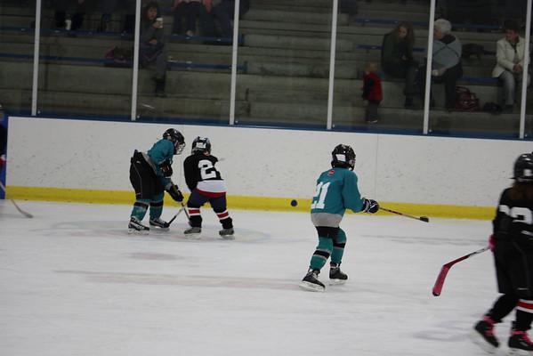 Playoff 1 vs Blackhawks 3/13/2010