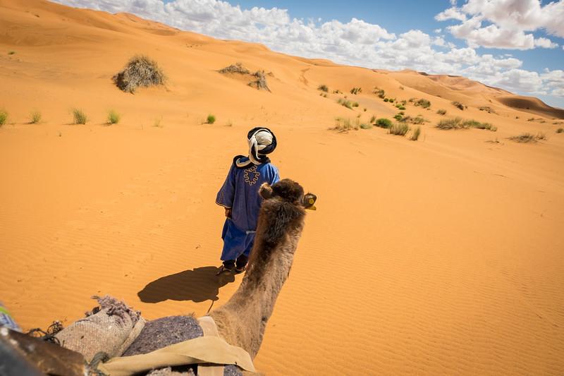 Genevieve Hathaway_Sahara_camel trek_1.jpg