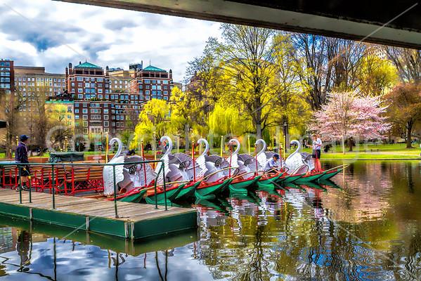 Boston MA  Spring of 2015