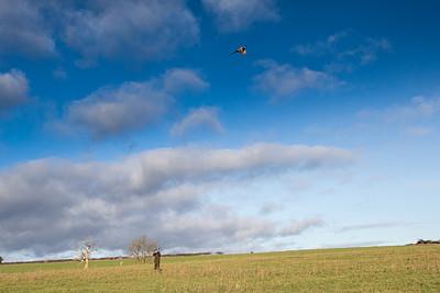 Craven Farm Shoot