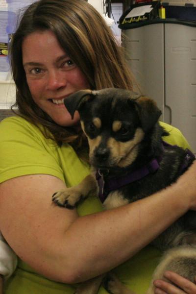 Rocket Dog Rescue Adoption Event 4.27.2007