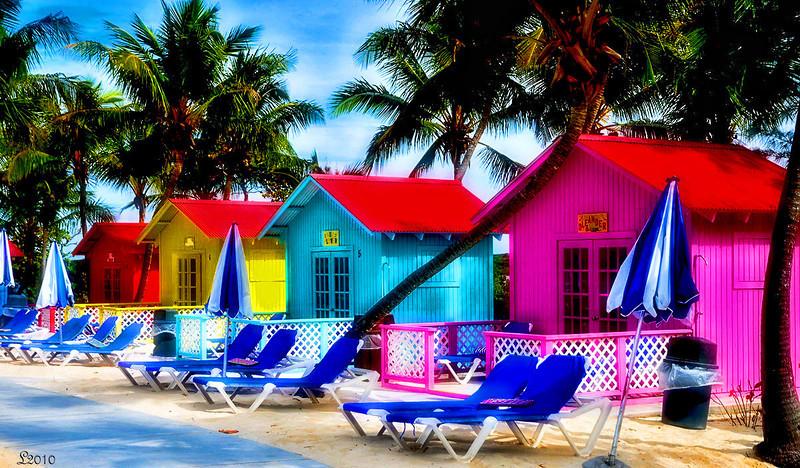 Bahamas 02-19-2010 75a.jpg
