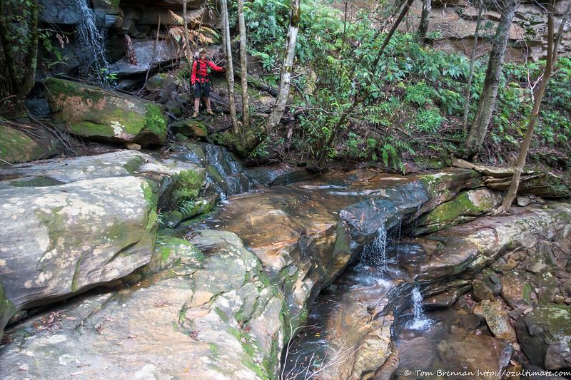 A very slippery waterfall in Pass 29 creek (aka Creeky Creek!)