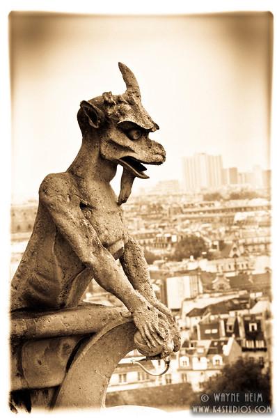 Notre Dame Gargoyle 4  Photography by Wayne Heim