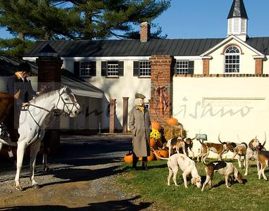 Piedmont Fox Hounds meet at Huntland 11-21-15
