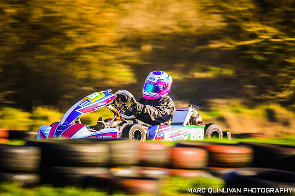 Leinster Karting Club - 2019/20 Winter Championship - Round 4