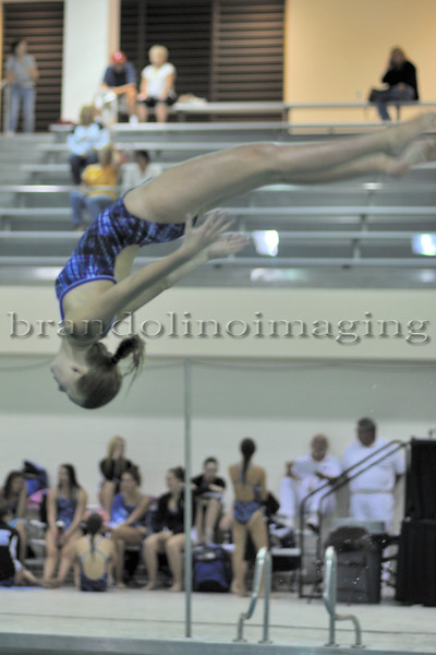 Lincoln-Way East Girls Diving (2012)