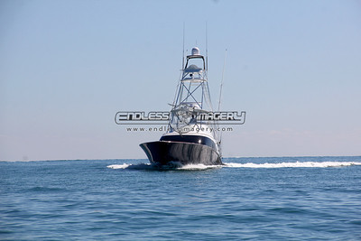 2014 Jimmy Johnson's National Billfish Championship - Day 2 South Check in