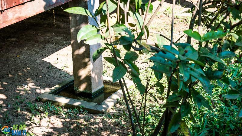 Silk-Farm-01722.jpg