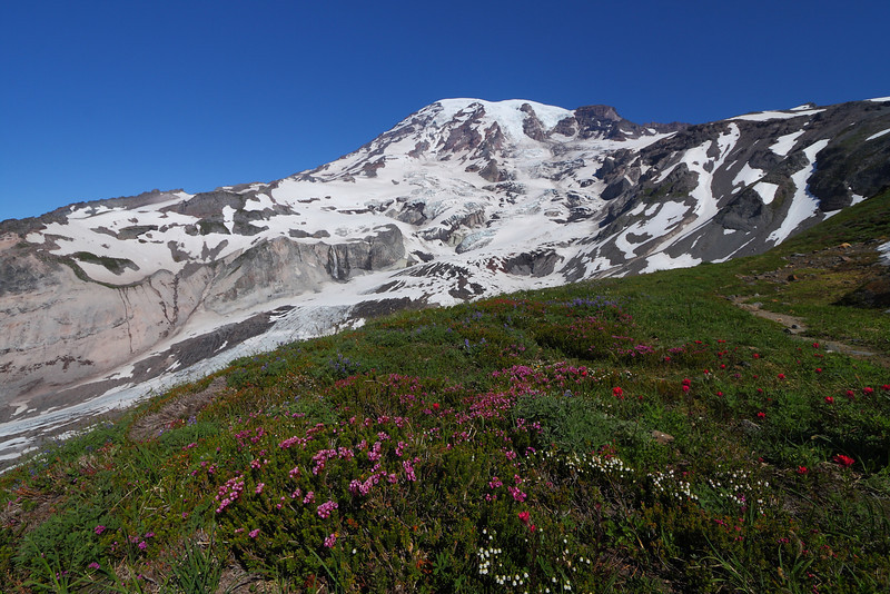 Mt. Rainier NP - Aug 201013.JPG