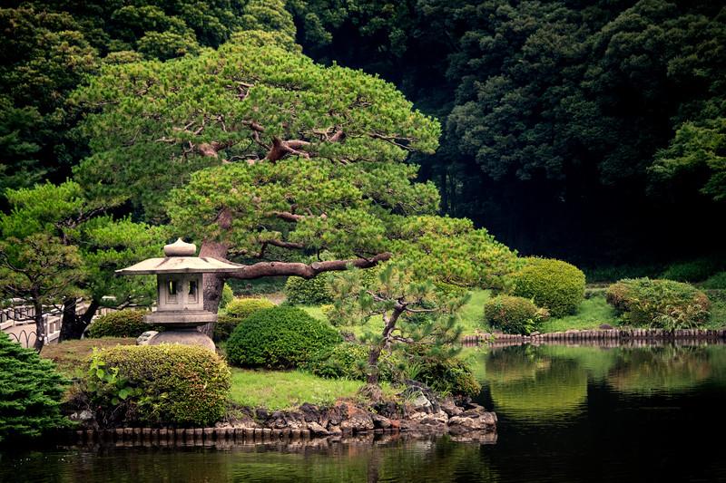 Stillness in the Garden