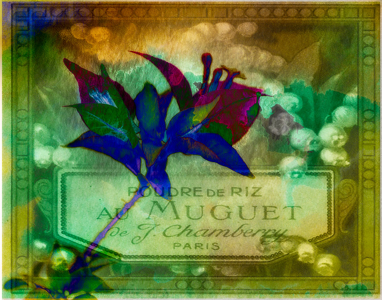 flowerparis_7778-Edit.jpg
