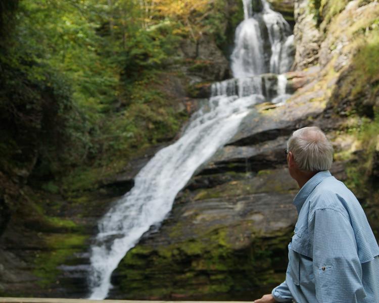 Fred Dingmans Falls.jpg