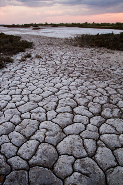 Cracked mud flats, Derby, Western Australia,