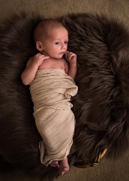 Cole Newborn - 70 - _1BT8421.jpg