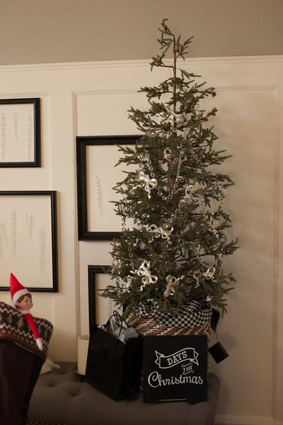 Bethany christmas RAW (224 of 360).JPG