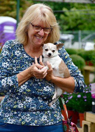 9/7/2019 Mike Orazzi | StaffrDeb Malarky with holds Holly during the 2nd annual Support Help Willy's Friends held at myAGWAY of Southington on Saturday.