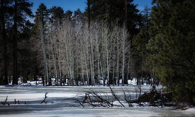 Payson - Springerville Trip 2013/02/15_16