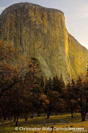 El Capitan and Trees Sunrise