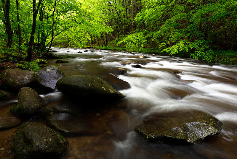 Down Under Spring - Middle Prong Little River (Tremont Area - Great Smoky Mountains National Park)