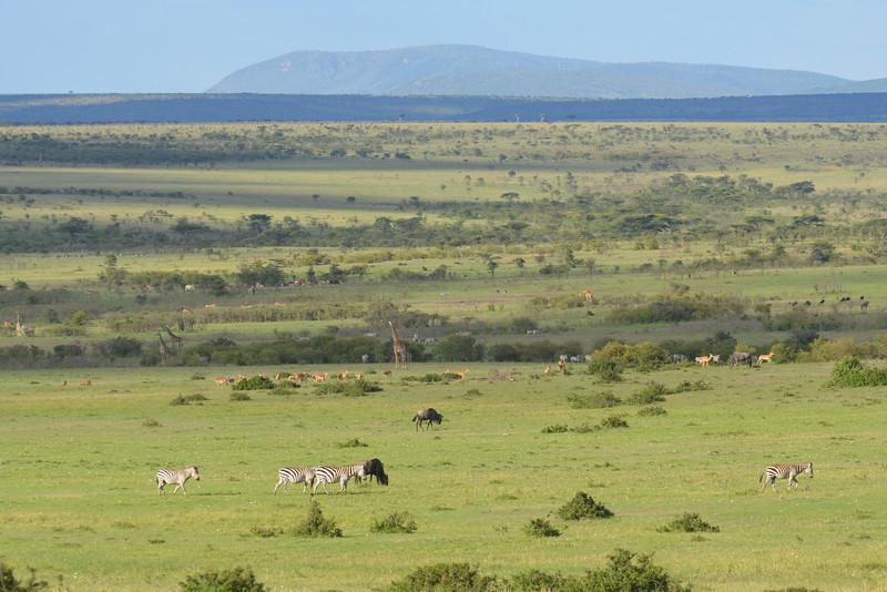 East Africa Safari 162.jpg