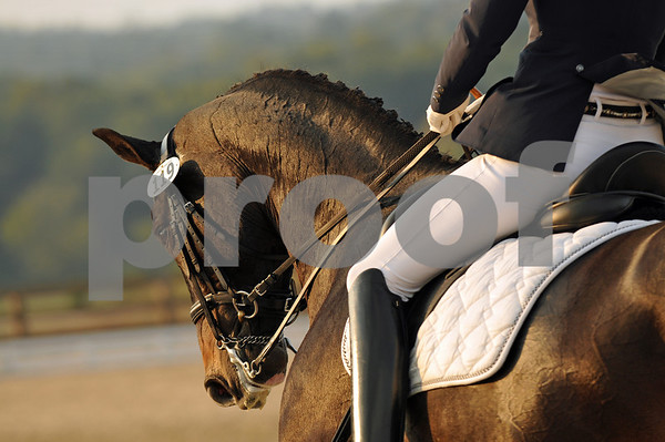 10.7.12 Region 3 Dressage Championships - Chatt Hills